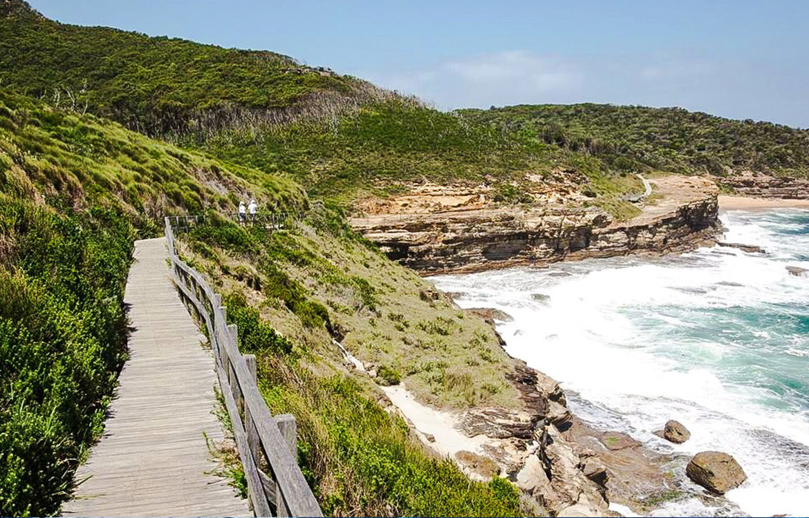 Bouddi National Park coastal walk. Photo: Brett O'Maley