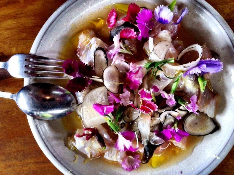 Raw white fish and radish at the Bombini and Biota lunch