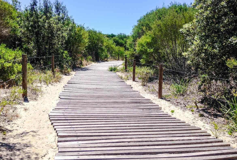 Tuggerah Beach walkway